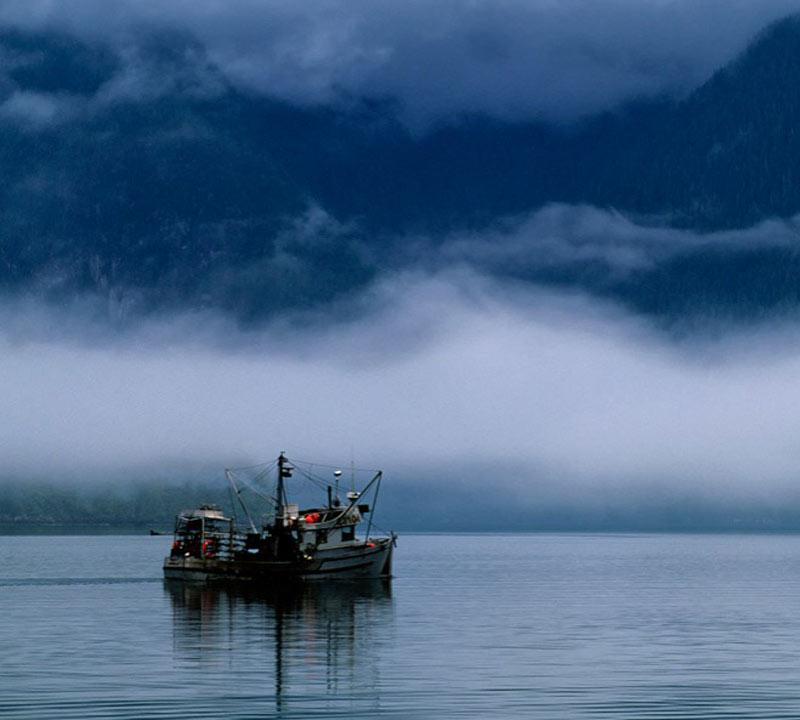 fishing-in-canada-at-night-93732